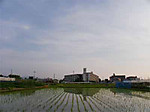 Sora120607